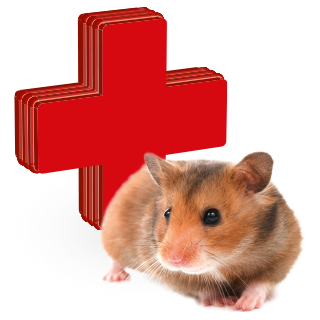 Obrázok pre kategóriu vitamíny, léčiva a kosmetické přípravky