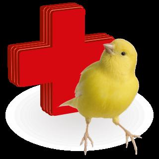 Obrázok pre kategóriu vitamíny, léčiva pro ptáky