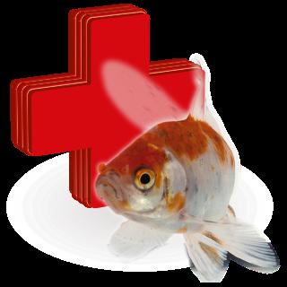 Picture for category léčiva pro jezerní ryby