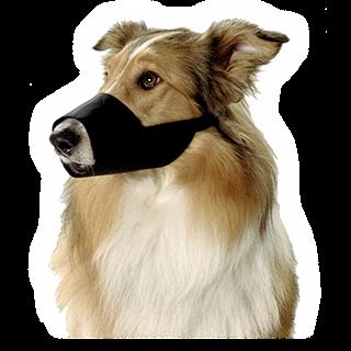 Obrázok pre kategóriu nylonové náhubky pro psy