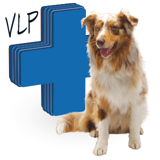 Picture for category reserved medicinal products for dogs
