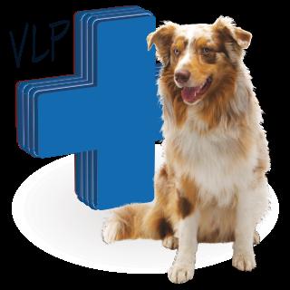 Obrázok pre kategóriu antiparazitika (VLP) pro psy
