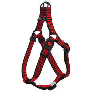 Picture for category Activ Dog Premium - harnesses